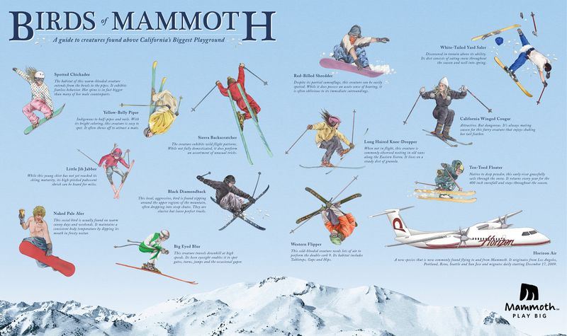 Winter - mammoth mountain birds ad by David&Goliath,USA via adsoftheworld