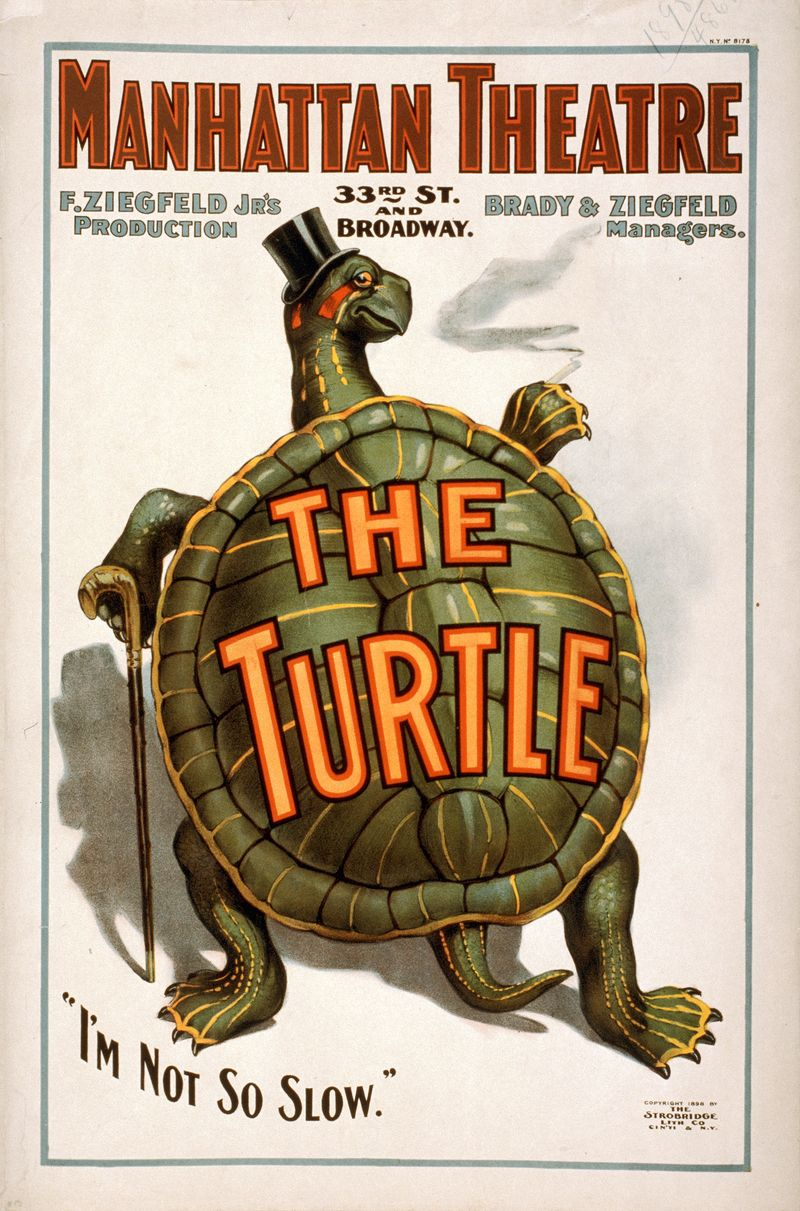 TMNT The Turtle opened at the Manhattan Theatre on Sept. 3, 1898 via atomicantiques